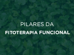 Pilares da Fitoterapia Funcional